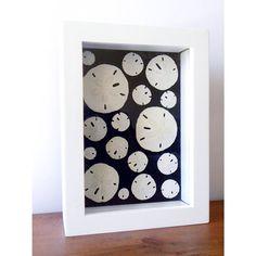 Sanddollar Shadow Box  White and Black by GeorgiePearlDesigns, $45.00