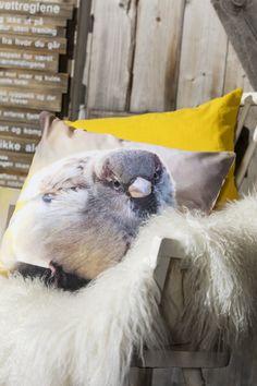 Putetrekk Spurv | Kremmerhuset #Kremmerhuset #Interior #Inspiration Throw Pillows, Cushions, Decorative Pillows, Decor Pillows, Scatter Cushions