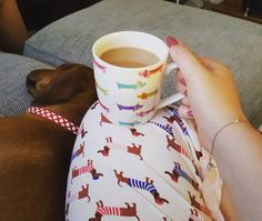 It is safe to say that this hooman is a sausagedoglover!  IG @winstonthesausagedog16 #sausagedoglove