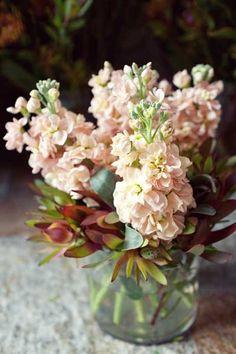 jars of flowers...Ana Rosa