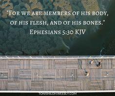 Ephesians 5:30 KJV