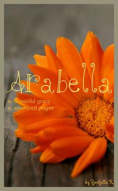 Baby Girl Name: Arabella. Meaning: Beautiful Grace; Answered Prayer (Jamaican) Beautiful Lion (English) Scottish. http://www.pinterest.com/vintagedaydream/baby-names/