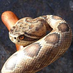 hand carved rattlesnake walking cane, #39. by Mike Stinnett