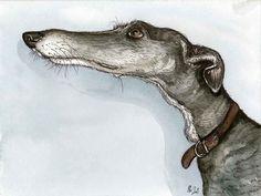 Elle J Wilson. Love. I *know* this Greyhound.