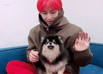 Jeon Jungkook has a fan account for the two relationships within BTS,… Namjoon, V Taehyung, K Pop, Bts Cute, V Video, Fandom, About Bts, Wattpad, Bts Group