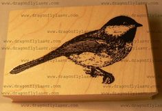 Chikadee bird rubber stamp WM by dragonflybuzz on Etsy, $8.00