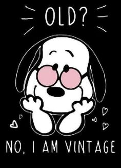 Ideas Funny Happy Birthday Friend Quotes I Am Snoopy Love, Charlie Brown And Snoopy, Snoopy And Woodstock, Snoopy Quotes Love, Happy Birthday Charlie Brown, Happy Snoopy, Peanuts Cartoon, Peanuts Snoopy, Happy Birthday Friend