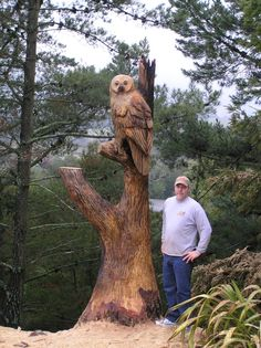 ECHO Chainsaw Carving Team Member Bob King says the view was fantastic when he carved this big owl in a customers stump in Northern, California