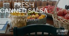 Canning salsa fresh from the garden is easy. It's great for snacking & as an ingredient in chili and spicy dishes. This is the best salsa recipe for canning!