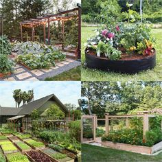 24 Easy DIY Garden Trellis Ideas & Plant Structures - A Piece of Rainbow - 8 Easy steps to plan start an abundant vegetable garden! Best beginners organic gardening tips on - Shade Plants Container, Container Gardening, Garden Trellis, Garden Beds, Vegetable Garden Design, Diy Greenhouse, Organic Gardening Tips, Shade Garden, Garden Projects