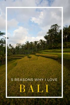 There are so many reasons to love Bali, Indonesia.  What are yours?