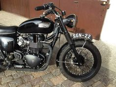 Triumph sgn22 Don't know why.... I really like this!