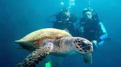 Unterwasserakamera