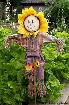 flowerbed scarecrow - Google Search