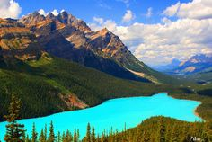 El Lago Peyto, está considerado uno de los lugares más bellos de Canadá. Situado dentro del Parque Nacional Banff, en el Estado de Alberta,