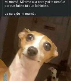 Lol Memes, Stupid Memes, Memes Humor, Funny Spanish Memes, Spanish Humor, Funny Images, Funny Pictures, Wallpaper Animes, Mexican Memes