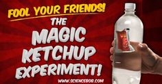 It looks like magic, but it's all about liquid density. Have fun fooling your friends with this easy experiment.