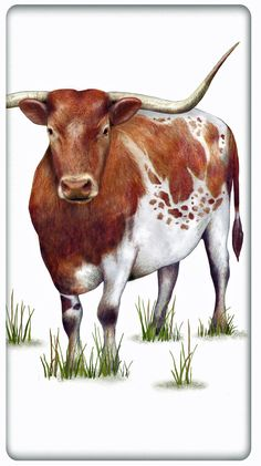Mary Lake Thompson Longhorn Steer - A Love Of Dish Towels