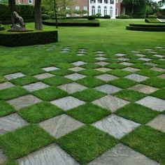 Checkered grass! So cool!