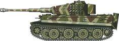 Tiger H/E camouflage patterns - Normandy, June 1944 sSS-PzAbt102