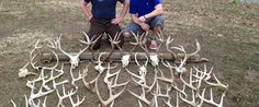 Whitetail Overload | For those Addicted to Whitetail Deer Hunting! | Bowhunting, Rifle Hunting, Trophy Bucks, Tips, Photos, Videos