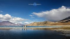 Pangong Lake, in the Himalayas situated at a height of about 4,350 m
