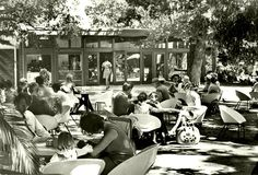 Tearoom at the Company Gardens, Cape Town, Old Pictures, Old Photos, Vintage Photos, Cities In Africa, Cape Dutch, Cape Town South Africa, Most Beautiful Cities, Historical Pictures, African History