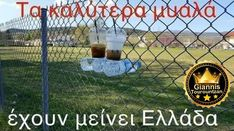 Alcoholic Drinks, Funny Quotes, Greek, Jokes, Wisdom, Lol, Let It Be, Sayings, Humor