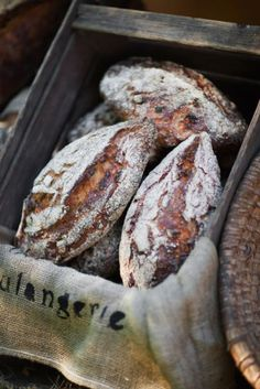 Det här underbara surdegsbrödet har en härlig skorpa och lite segt inkråm. Brödet har en god, söt och frisk smak som gifter sig utmärkt med valnötterna.