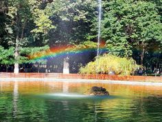 #magicview #rainbow #magiccolours #nature #themagicnature #sunnyday #picoftheday #instapic #instagram #contest #promovamromania… Sunny Days, Insta Pic, Rainbow, Colours, Water, Outdoor, Instagram, Art, Rain Bow