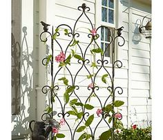 Trellis with pink flowers