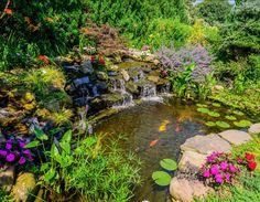 Pond Ideas. Koi Pond. #Pond #PondDesign #KoiPond