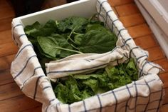 Lettuce in dish towels, store in paper towel lined or dish towel lined crisper for longer lasting greens