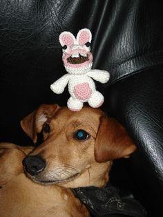 petit lapin crétin et chien