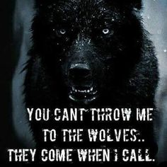 I am the soul trapper whose music beckons the wolves to my cry.