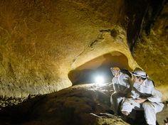 В Стране басков нашли уникальные рисунки животных созданные 145 тысяч лет назад - NEWSru.com