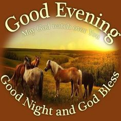 Good Evening Good Night And God Bless .