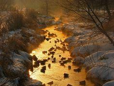 Minnesota, creeks, lakes, rivers, fog, ducks, snow
