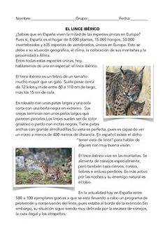 Printables Spanish Reading Comprehension Worksheets spanish reading comprehension worksheets and the ojays on pinterest worksheet with questions iberian lynx lectura en espaol sobre el