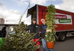 Persbericht: Rotterdam vervangt Kerstboom voor kamerplant
