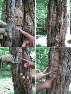 Carving A Woodspirit In A Black Locust Tree: