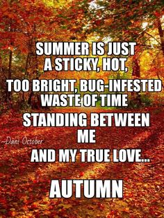 My true love. Hate Summer, Summer Heat, Autumn Cozy, Autumn Harvest, Autumn Leaves, Autumnal Equinox, Harvest Time, Autumn Art, Autumn Aesthetic