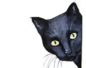 Cat Art - Curious -Black Cat -  Signed  Art Print  - Watercolor black cat art home decor...