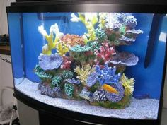 Fish Bowl Decorations Ideas Fish Tank Decorations For Your Living Room Ideas Idea Magz Cool