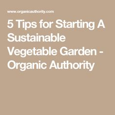 5 Tips for Starting A Sustainable Vegetable Garden - Organic Authority