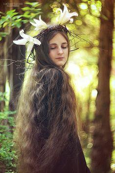 Elven fairytale