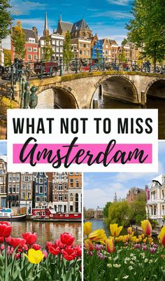 What Not To Miss in Amsterdam, The Netherlands I Things to do in Amsterdam I Amsterdam Itinerary I What to Visit in Amsterdam I Amsterdam Attractions I Alternative Things to Do in Amsterdam I How to Visit Amsterdam I Tips for Visiting Amsterdam I Tips and Tricks for Amsterdam Travelers I Best Things to See in Amsterdam I Hidden Gems in #amsterdam #thenetherlands #holland European Travel Tips, Europe Travel Guide, Europe Destinations, Travel Guides, Travel Abroad, Amsterdam Things To Do In, Visit Amsterdam, Amsterdam Travel, Amsterdam Itinerary