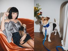 Luxury Harnesses from BABA Paris