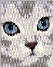 Silver Chinchilla Persian Cat PDF Pattern