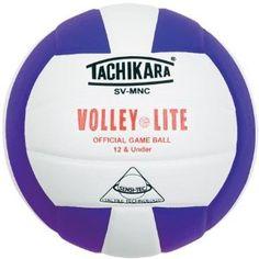 purple volleyball  - Go Blitz!